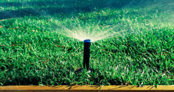 Tips For Early Spring Lawn Care