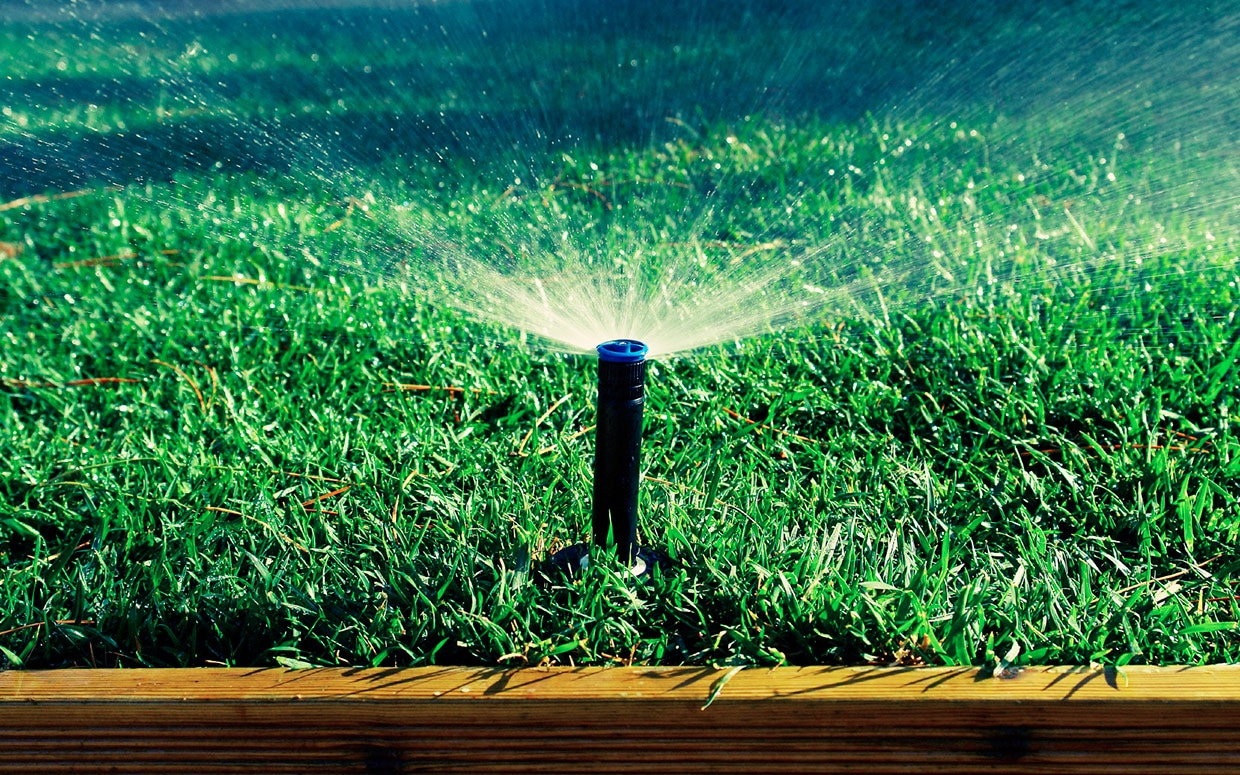 early spring lawn care tips - HD1240×775