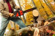 Best Chainsaw 2017